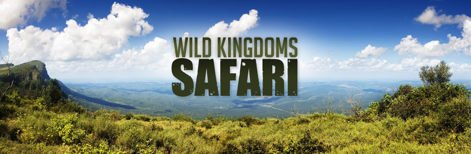 Wild Kingdoms Safari
