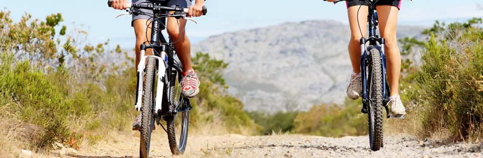 Half Day Table Mountain e-Biking Adventure