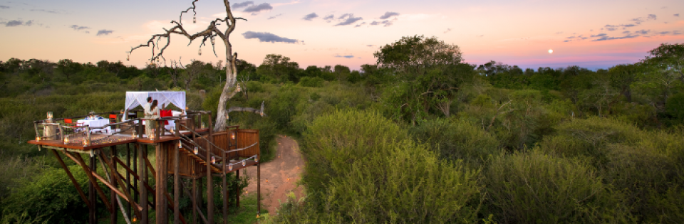 Travel to Southern Africa in 2021