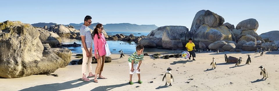 Family-Friendly Beaches in Cape Town