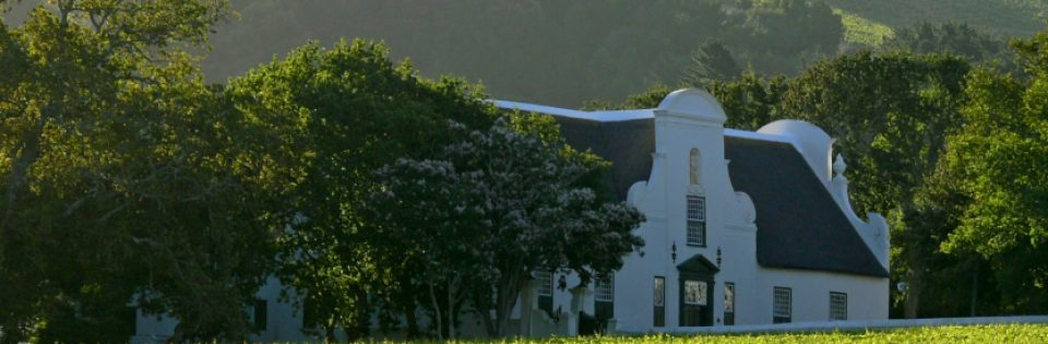 The Heart of Cape Town Museum & Groot Constantia Wine Estate Experience