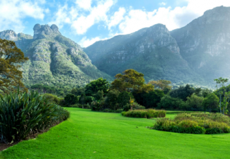 Kirstenbosch & Company Gardens
